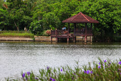 Uferpavillons stockbilder