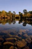 Uferreflexion Lizenzfreies Stockfoto