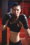 Ufnego żeńskiego boksera spełniania bokserska postawa zdjęcie royalty free