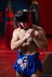 Ufnego boksera spełniania bokserska postawa zdjęcia royalty free