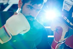 Ufny bokser uderza pięścią stażową torbę fotografia stock