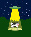 UFO abducts a cow. Space aliens and cattle. Flying saucer beam p Royalty Free Stock Photos