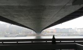 UFO Bridge. Underneath UFO Bridge. Bratislava. River Royalty Free Stock Images