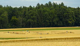 UFO Crop Circle in Biburg, Germany Stock Photo
