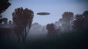 Ufo. Encounter in the woods