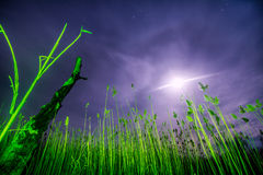 UFO-Fliegen strahlt - Nachtvollmondlandschaft aus Stockbild