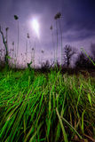 UFO flying rays - night full moon landscape Royalty Free Stock Image