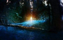 UFO, foresta blu magica con il ceppo caduto della betulla con l'età, con la figura nel mezzo, mostro, concetto mistico di fiaba Fotografia Stock Libera da Diritti