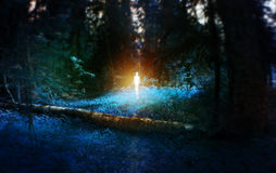 Ufo, magic blue forest with fallen birch log with age, with the figure in the middle, monster, mystic fairy tale concept Royalty Free Stock Photo