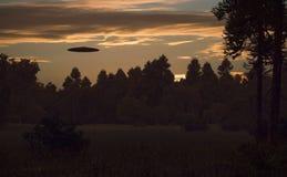 Ufo in nachtbos royalty-vrije illustratie