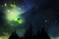 UFO and weird lights in the night sky Stock Images