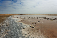 Ugab-Flussmündung Lizenzfreie Stockfotografie