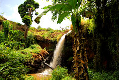 Uganda. A tropical waterfall rushing near kapchorwa uganda east africa Stock Image