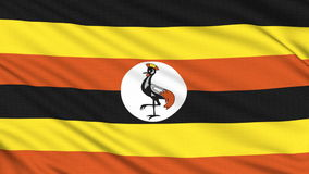 Uganda flag. Uganda flag, with real structure of a fabric stock video