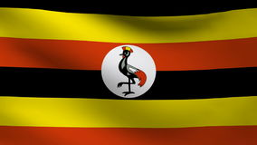 Uganda flag. Animation of Uganda flag moving stock video