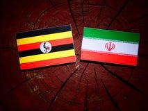 Uganda flag with Iranian flag on a tree stump isolated. Uganda flag with Iranian flag on a tree stump Stock Photography