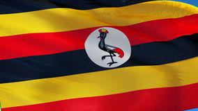 Uganda flag in slow motion seamlessly looped with alpha stock video