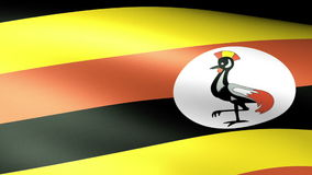 Uganda Flag Waving stock footage