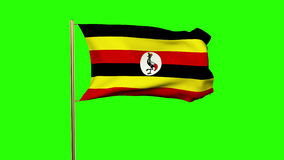 Uganda flag waving in the wind. Green screen stock footage