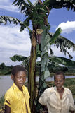 Ugandan Children pose for a banana tree and lake Royalty Free Stock Images