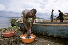 Ugandan man wash clothes at Lake Victoria, Uganda Royalty Free Stock Images