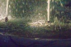 Ugelli ad alta pressione del metallo sui getti di spruzzatura della fontana di acqua i Fotografia Stock