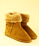 Warm boots Royalty Free Stock Images