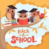 Uggla i filial Tillbaka till bakgrund för begrepp för skolaseptember höst med fåglar med böcker och ryggsäckvektortecknade filmen royaltyfri illustrationer