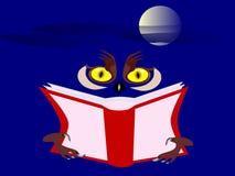 Uggla med en bok på natten Arkivbild