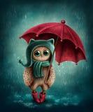 Uggla med paraplyet Arkivbild