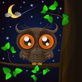 Uggla och måne, nattlig himmel Royaltyfri Fotografi