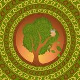 Uggla på eken som utomlands ser stock illustrationer
