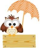 Uggla på trätecken med paraplyet Arkivfoton