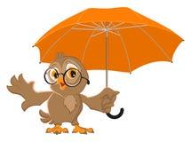 Ugglafågelhåll öppnar paraplyet Royaltyfri Foto