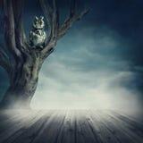 Ugglasammanträde på trädet Arkivfoton