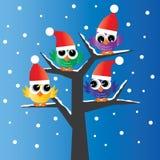 Ugglor för en full ow för träd färgrika stock illustrationer