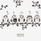 Ugglor fem vektor illustrationer