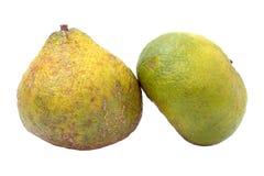 Ugli-Frucht benannte auch Uniq Frucht lizenzfreie stockfotografie
