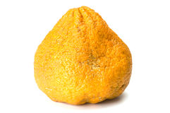 Ugli fruit Royalty Free Stock Image