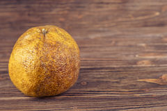 Ugli fruit Royalty Free Stock Photos