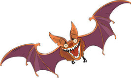 Ugly bat Royalty Free Stock Photography