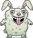 Ugly Bunny Standing Stock Photo