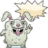 Ugly Bunny Talking Stock Photos