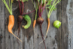 Ugly carrot, beetroot and cucumber. Trendy ugly organic carrot, beetroot and cucumber from home garden stock images