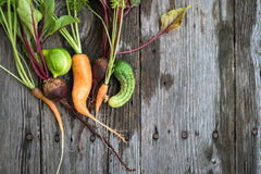 Ugly carrot, beetroot and cucumber Stock Images
