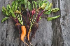 Ugly carrot and beetroot Royalty Free Stock Photo