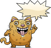 Ugly Cat Talking Stock Image