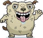 Ugly Dog Waving Stock Photo