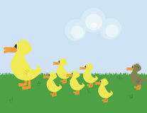 Ugly Duckling stock illustration