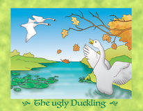The ugly duckling 16: beautiful flying swans Stock Photo